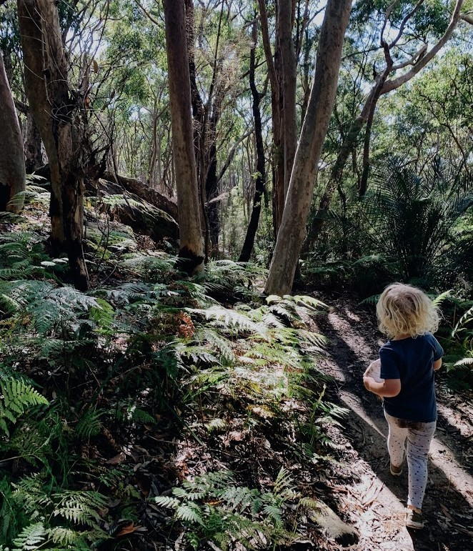 A bush setting with a young person in the foreground. They are holding a map and skipping along the sandy path.